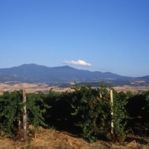 La skyline del Monte Amiata, il nostro vulcano oramai spento